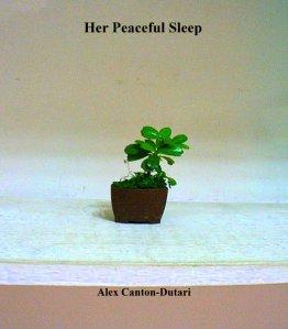 ALEX CANTON COVER 3